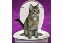 WCkici toaleta pro kočku