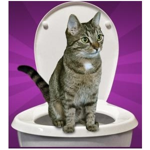 http://vyhodneceny.com/218-1507-thickbox/wckici-toaleta-pro-kocku.jpg