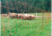 Elektrický ohradník - síť pro ovce 50m